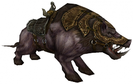 Young Boar